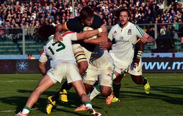 Preview: Italy vs Springboks