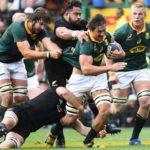 'Springboks are back'
