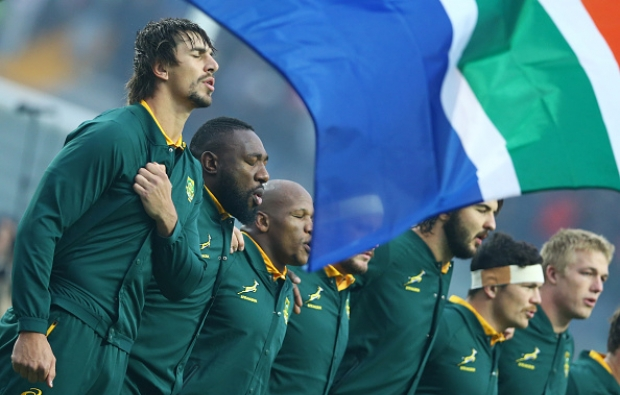 13 Springbok facts and stats