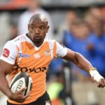 Sharks await Mapimpi's arrival
