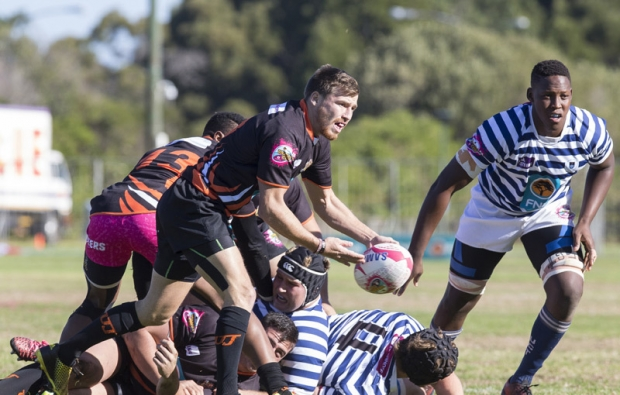 Steinhoff pulls out of Varsity Cup