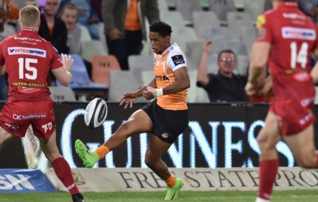 Barry back at Cheetahs despite recall