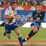 WP Rugby denies Vermeulen link