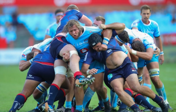 Schoeman banned for biting