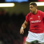 Wales suffer Faletau blow