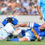 Stormers sweat over Louw