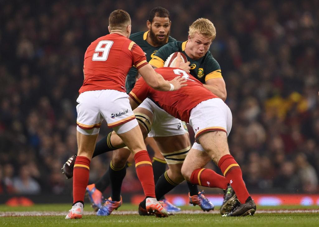 Preview: Springboks vs Wales