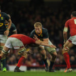 Superbru: Wales or Springboks?