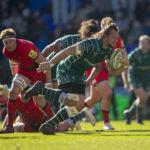 Botha signs for Munster