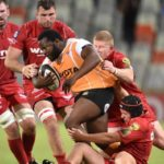 'Cheetahs have showed fight'