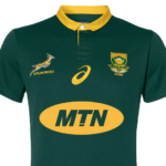 Springbok supporters jersey