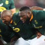 Rassie hails 'unbelievable' Beast
