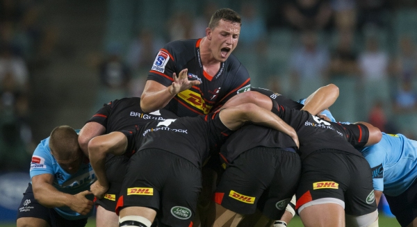 Stormers receive some reinforcements