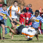 WP pound Free State, Boland edge Lions