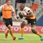 Bok trio to boost Cheetahs