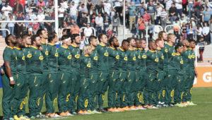 Springbok lineup