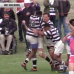 Highlights: Selborne vs Grey High