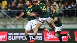 Springboks, Willie le Roux