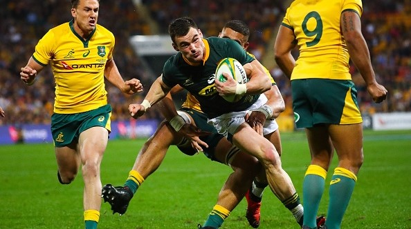 Image result for wallabies springboks