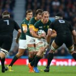 Our Springbok XV: The back row