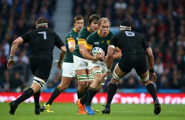 Our Springbok XV: The back row