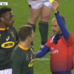 Watch: Le Roux yellow-carded by Poite