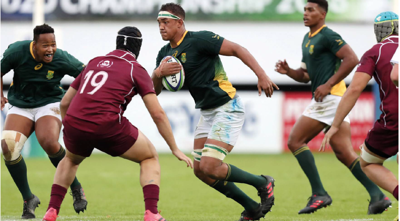 Future of Springbok rugby (second row)