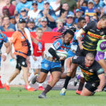 Bulls primed to end Newlands drought?
